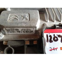 Peugeot 208 Motor Beyni 9810858280 / 98 108 582 80 / Delphi 28447924